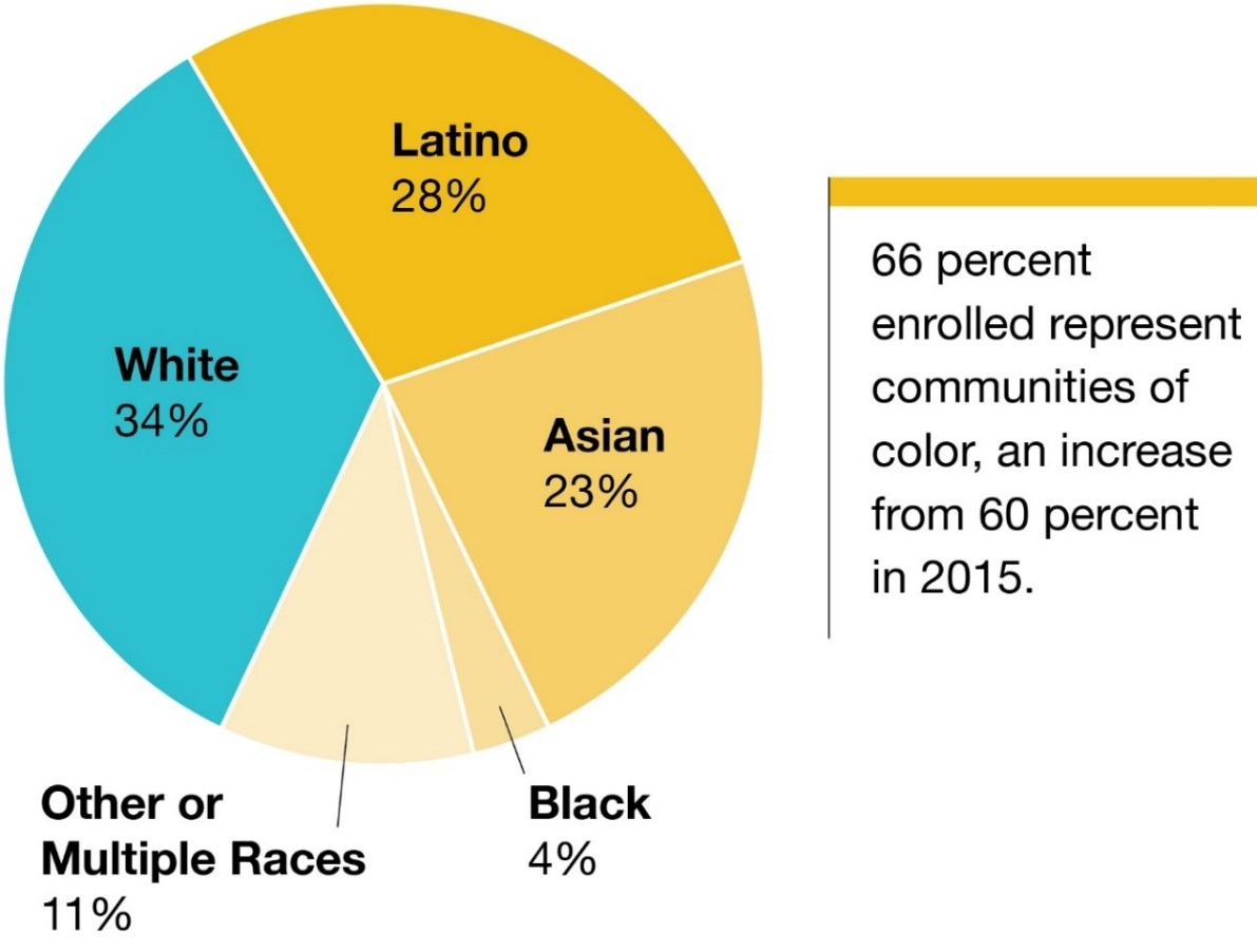 Plan selections by ethnicity